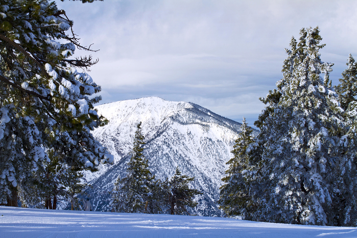 20160110_Mt Baden-Powell from Discovery Chair