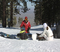 The North Resort is now open for riding! Great beginner terrain and views!