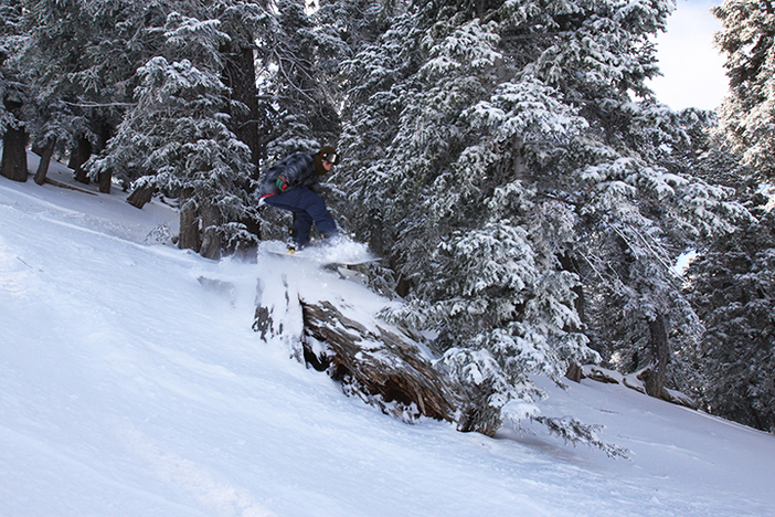 Finding naturals features in the new snow!