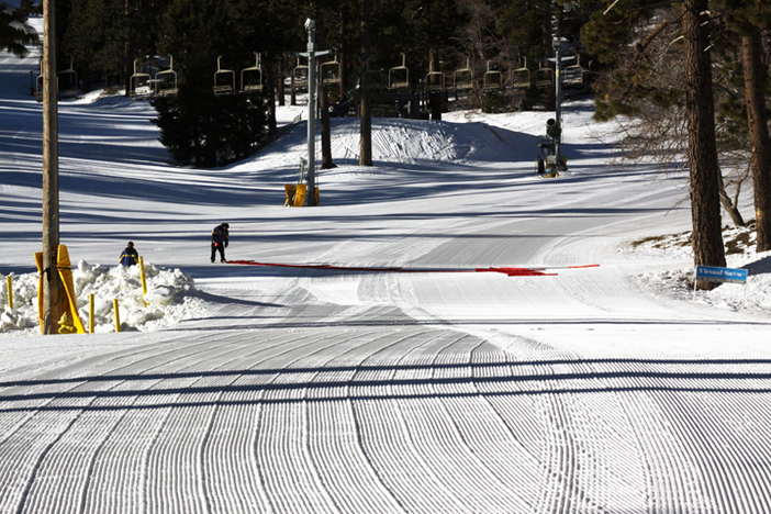 Who's down for some fresh groomers this morning?