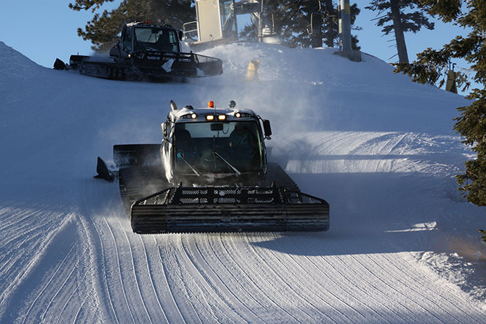 Groomers and park staff have been killing it!