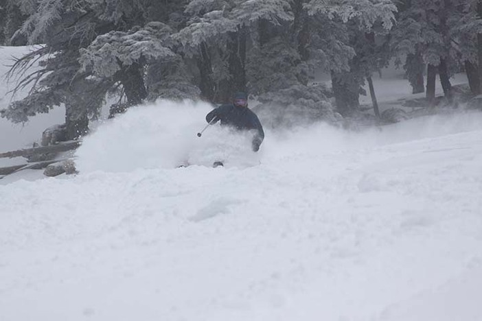 Charging through the freshies!