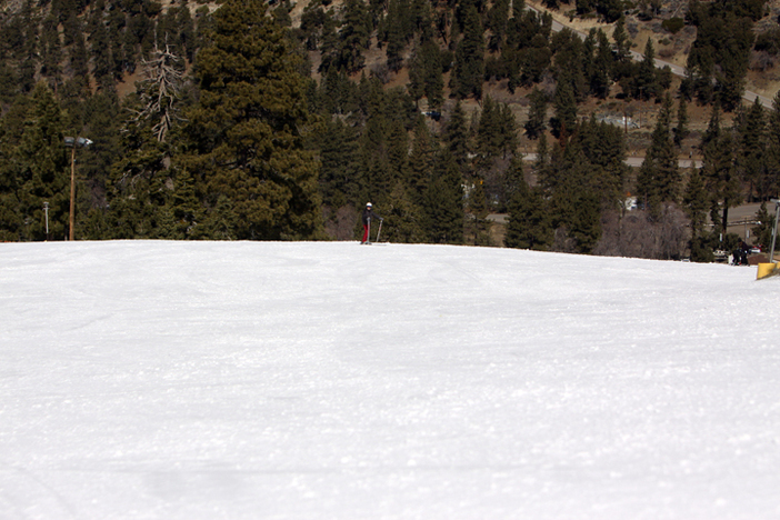 Come enjoy the beautiful spring weather and wide open runs.