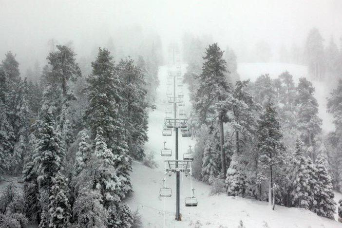 Snowvember snow covers the trees.