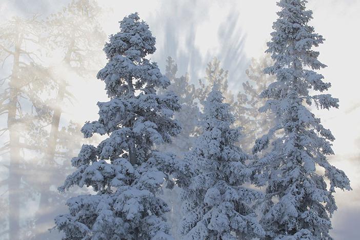 Come ride in a winter wonderland.