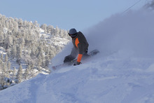 """4-6"""" of new snow dropped on us last night!"""