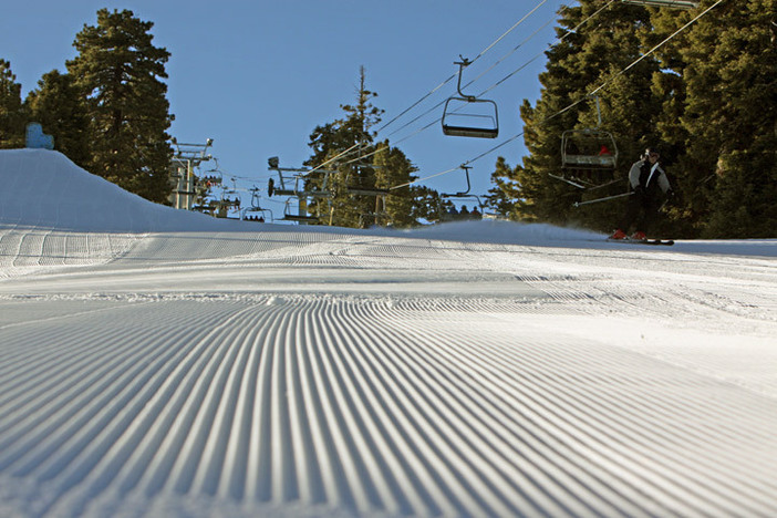 Fresh corduroy laps. Come get yours.