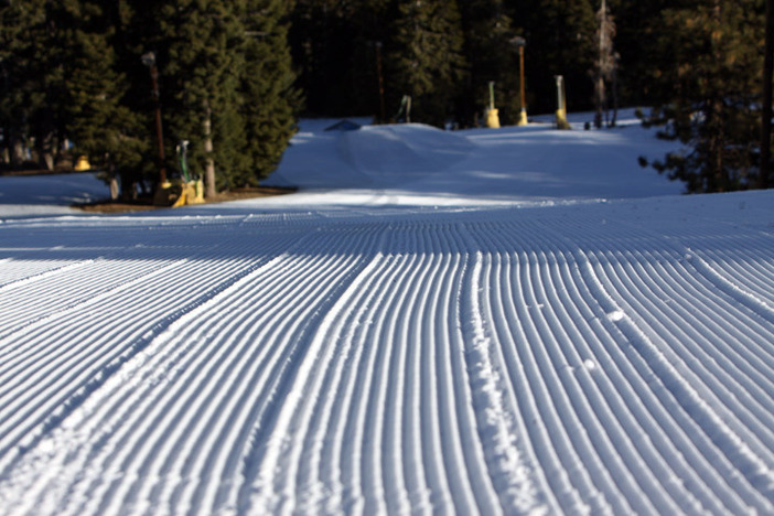 Head up early before class or work to get some great groomers in!