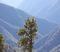 Escape LA and explore the outdoors!