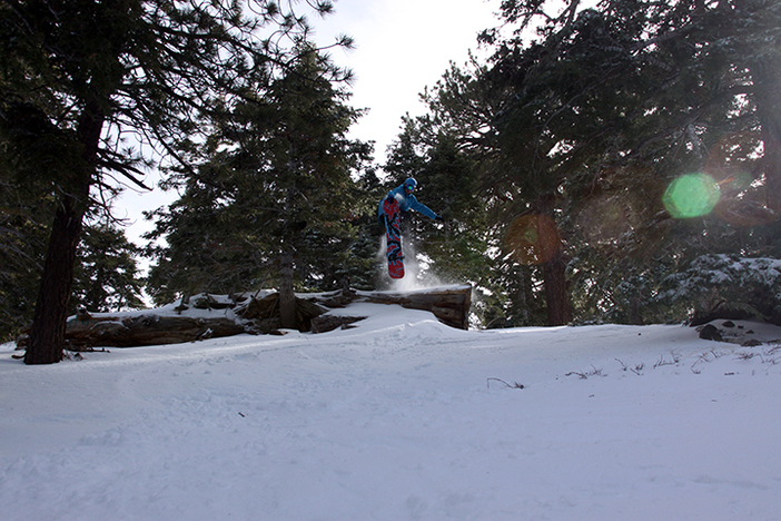 Boosting in the backwoods!
