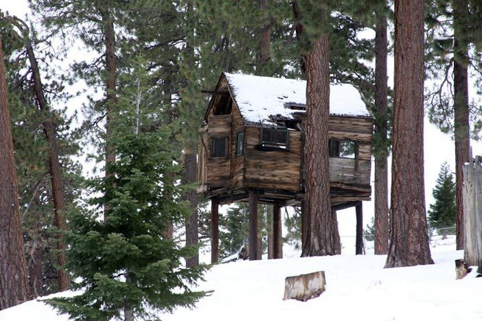 The cabin at North.