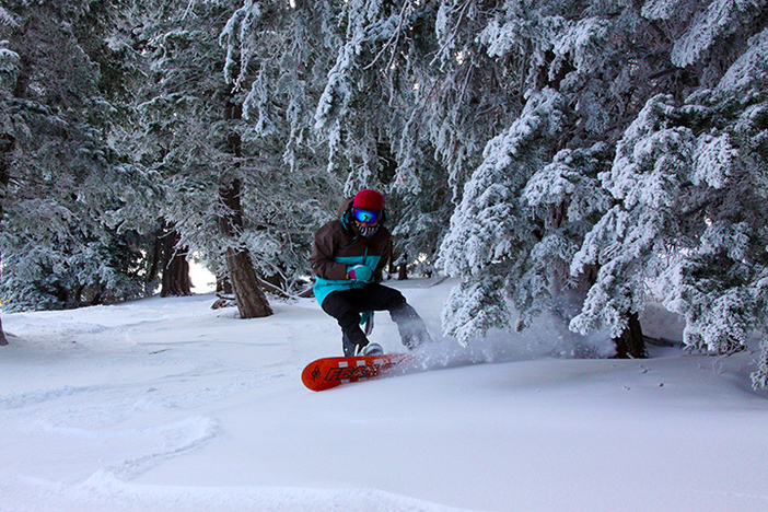 Kim finding some powder in the trees.