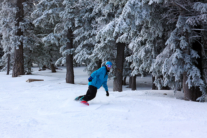 Have you gotten your fill of fresh tracks this season?