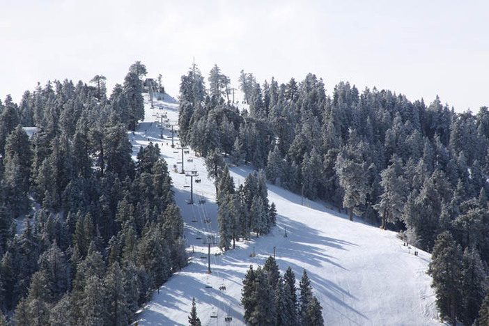 Escape to the mountains this week and enjoy the fresh snow.