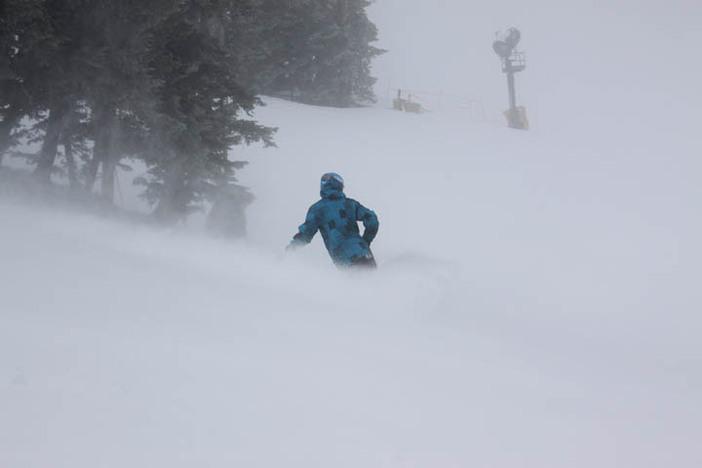 The snow is wonderful on Wyatt.