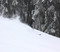 Slaying the fresh snow on Wyatt.