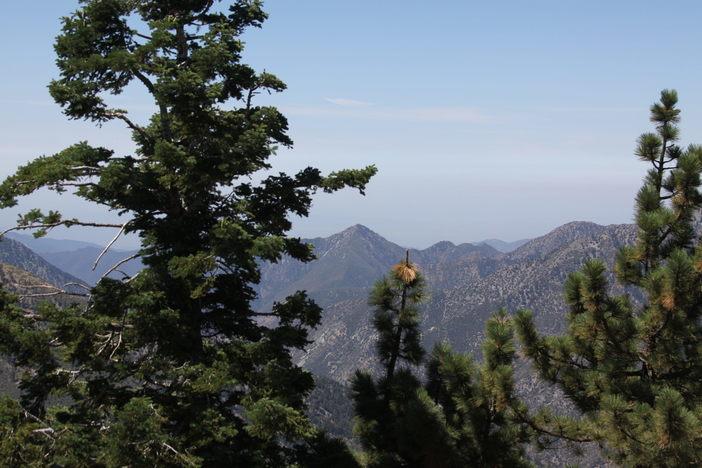 Looking into the LA valley