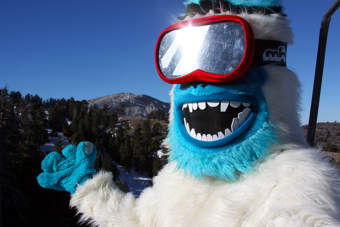 Yeti Loves The Views From The Lift.