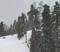 20191204 Rain turns to snow Photos MHW0001.jpg