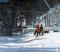 11 11 26 snow blowing_29.JPG
