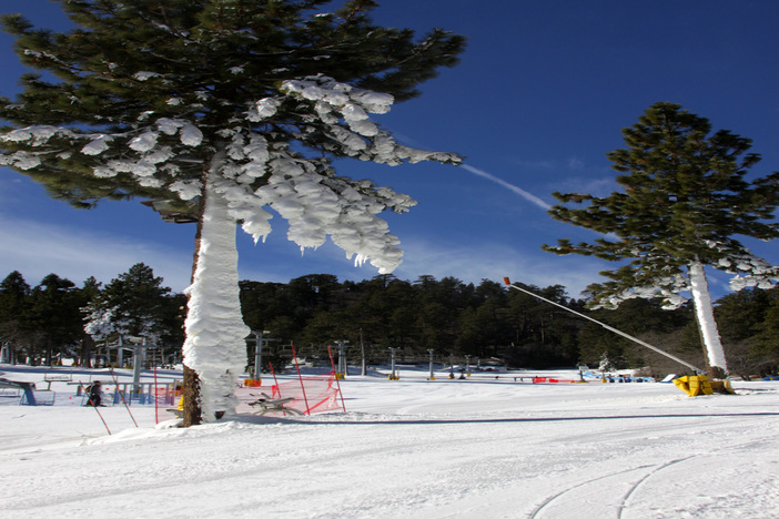 Conditions are excellent! Get up here now for some fun in the snow!