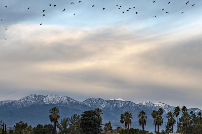 20181210_Sunrise San Gabriel Mountains Birds flying_0011.jpg