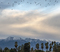 20181210_Sunrise San Gabriel Mountains Birds flying_0011.jpg