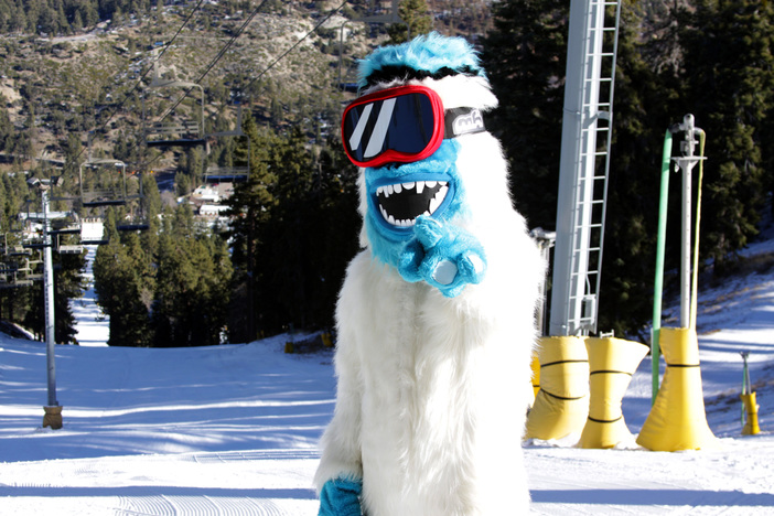 The Yeti is ready for Conquest... Are YOU?!