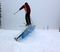 Ski slide into thin air