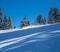 20191224 Snowy trees blue sky foot fresh snow_0475.jpg
