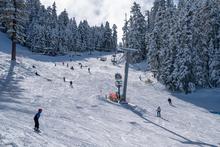 20191224 Snowy trees blue sky foot fresh snow_0483.jpg