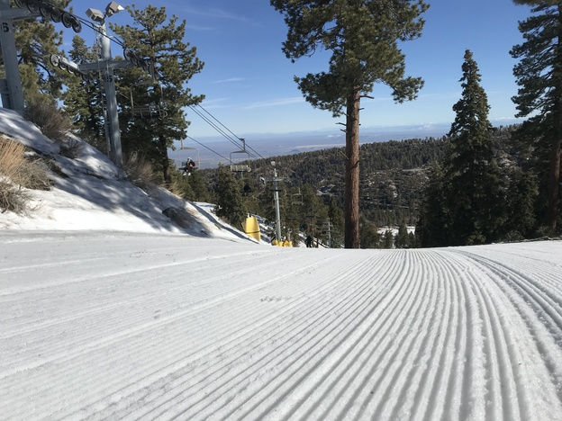Dreamy corduroy on Conquest.