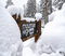 20200410 Good Friday Snowstorm COVID19 15_138 Wrightwood MH___288.jpg