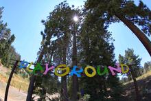 Everyone's favorite playground.