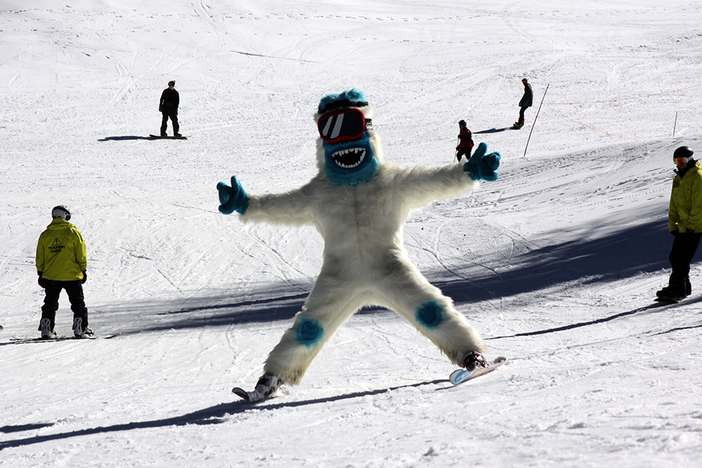 the yeti was spotted catching some top to bottom laps today!